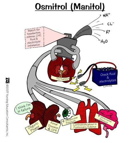 pharmacology mnemonics for nurses warfarin | Osmotic