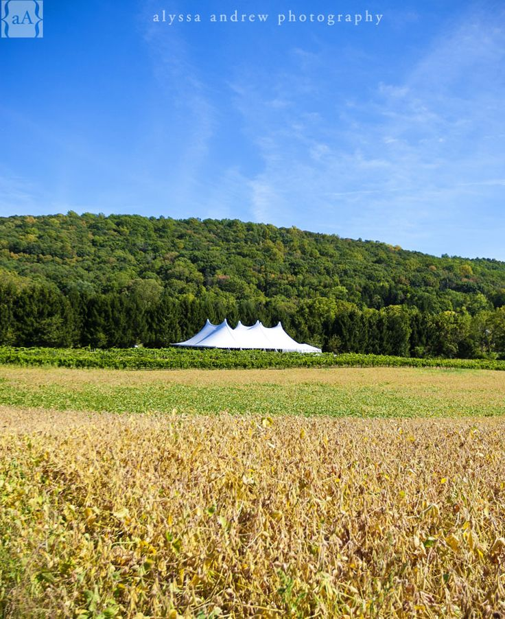 white tent across the fields. Four Sisters Winery at Matarazzo Farms, Belvedere, NJ