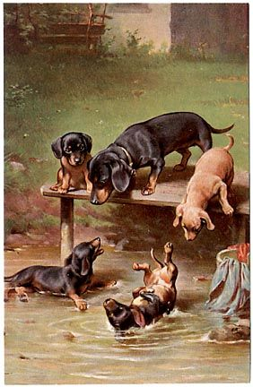 """Dachshund Family at Play"" -- by Carl Reichert (1836 -- 1918, Austrian)"