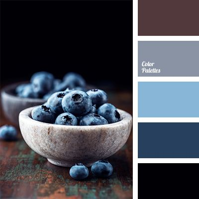 Contrasting combination in this palette is created by the combination of brown and dark blue. Blue colour is perfect to make accents..