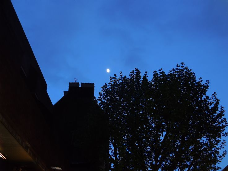 Moon over Bayswater