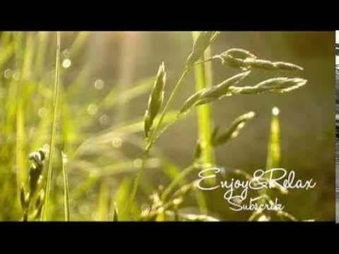 ▶ Beautiful Healing Long Time Relaxing Music Cello (Up beat for life) - YouTube