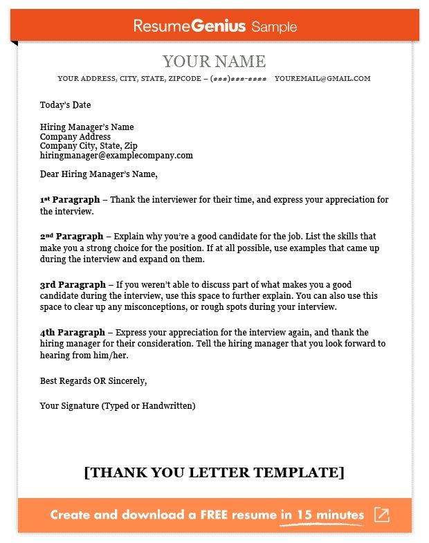Thank You Letter Template Sample And Writing Guide Resume