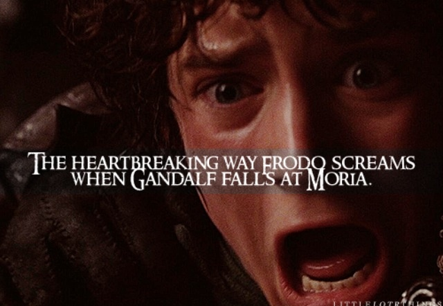 Image result for Frodo yelling gandalf