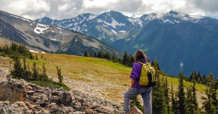 Parque Nacional Olympic, Washington: Existem duas formas de conhecer esse parque, localizado na península Olympic, no extremo noroeste dos EUA. Da forma rápida, de carro, pela Highway 101, que contorna todos seus 3.600km² de área