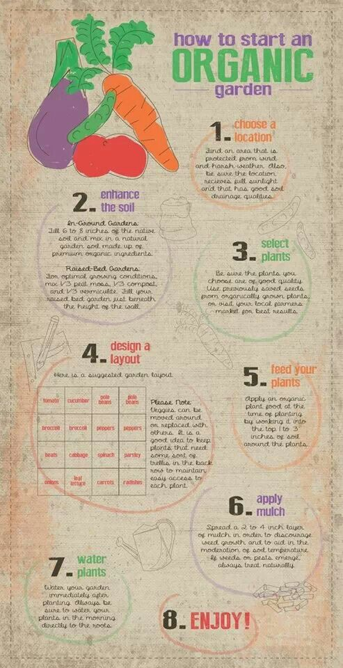 26 best images about food facts nutrition earthbound farm on pinterest