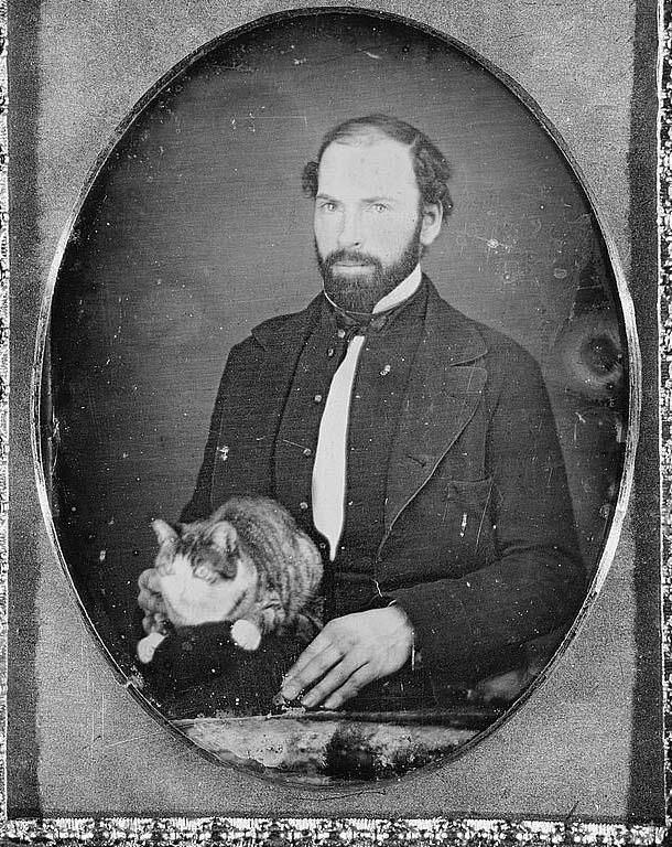 Tintype Cat - Vintage Pet Photos - these melt my heart.