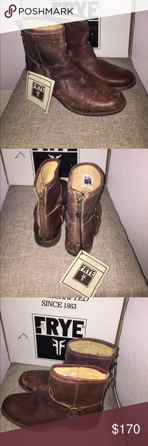 Frye Dark Brown Shoes were on the display Frye Shoes Ankle Boots & Booties