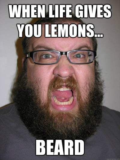 47048b0da874e43027c7952914898b19 beard trimmer humour 26 best beard memes images on pinterest beards, beard humor and