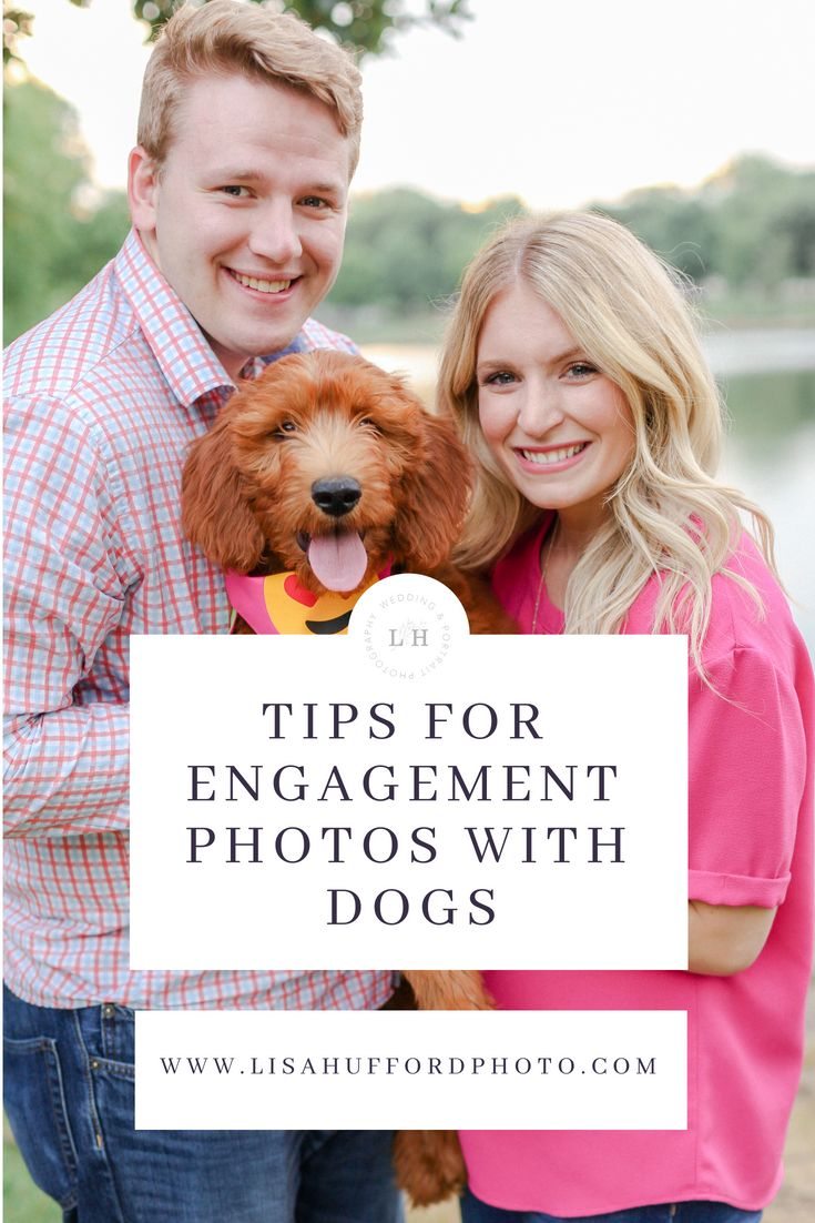 Tips for Engagement Photos With Dogs – Bride to Be Tips