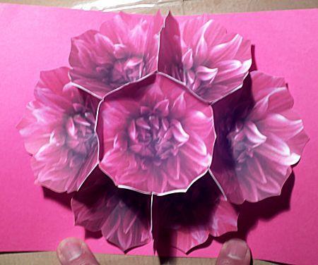 Uit het thema Moederdag het knutselidee: Zeven bloemen pop-up kaart