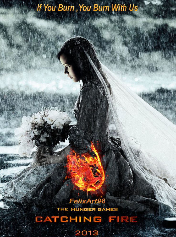 Catching Fire Can't wait for November! Check out The Dark Days while you wait and go back before the Rebellion! www.facebook.com/TheDarkDaysSeries!