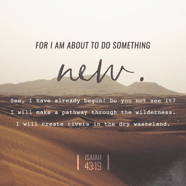 """Behold, I will do a new thing; now it shall spring forth; shall ye not know it? I will even make a way in the wilderness, and rivers in the desert."" ‭‭Isaiah‬ ‭43:19‬ ‭KJV‬‬"