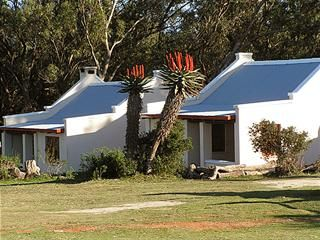 Oyster Bay Lodge, Cape St Francis