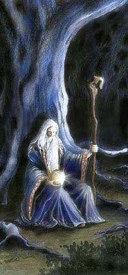 Wicca Online!: Um pouco de Druidismo - Pedro Guardião