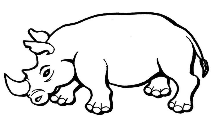 For Girls Free Printable Rhinoceros Coloring Pages For Kids For