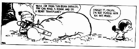 22 Words | 10 Calvin and Hobbes comic strips involving hilariously morbid snowmen