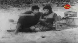 Apne Huye Paraye 1964 I Mala SInha, Manoj Kumar, Agha I Full Length Hindi Movie