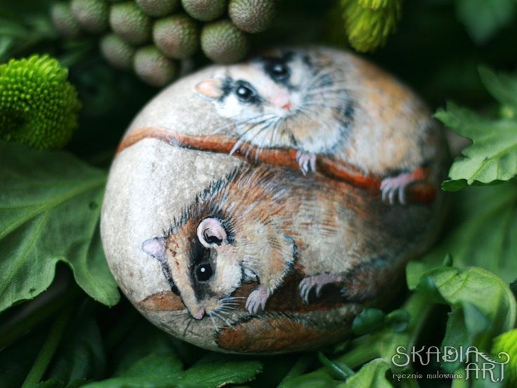 Hand-painted stone with two dormouse, made for order