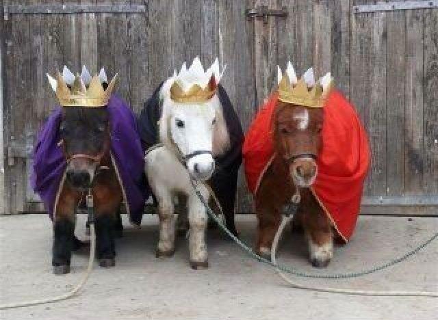 Caspar, Melchior und Balthasar .... fehlt nur noch mein Held, der mit mir den Mantel teilt