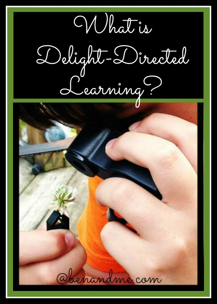 What is DelightDirected Learning? Homeschool curriculum