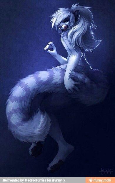 Znalezione obrazy dla zapytania magic wolf serena