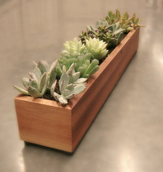 Dining room table centerpiece create long low planter for Long dining table centerpiece
