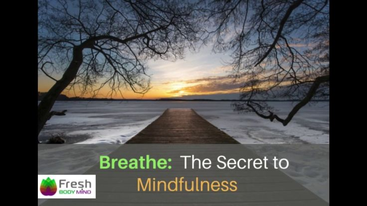 Breathe: The Secret to Mindfulness - Fresh Body Mind https://freshbodymind.com/breathe-secret-mindfulness/