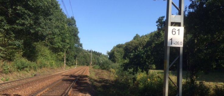 Złoty pociąg: Odkrywcy wskazują kolejne miejsca, w których mają być ukryte cenne przedmioty - Tajemnice Gór Sowich