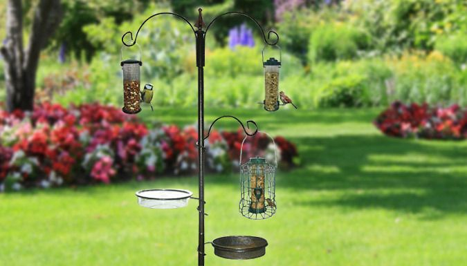 Buy Traditional Bird Feeder UK deal for just: £9.99 Attract wild birds to your garden with a Traditional Bird Feeder      Multi-functional feeding station for your garden      Elegant design with 3 open curved arms       Can be used with variety of bird seed feeders, suet balls and more       Help to attract wide variety of birds; from starlings to blackbirds.      Includes seed and water...