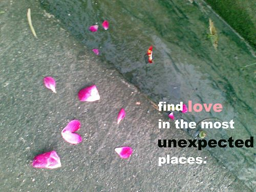 Finding Love Quotes Unexpected Places. QuotesGram