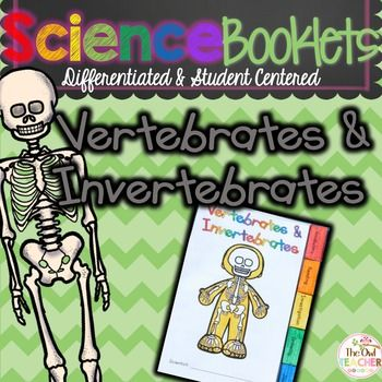 Vertebrates and Invertebrates Tabbed Booklet. This vertebrates and invertebrates booklet is a great way to focus on animal classification along with main idea, vocabulary, writing, and learn about of course - vertebrates and invertebrates!Unfortunately, with the large demands on reading and math from Common Core, science is often pushed to the side.