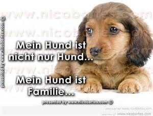 hundesprüche - 22find.com Yahoo Suche Bildsuchergebnisse