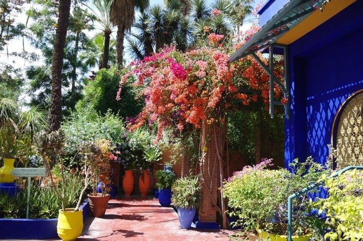 What an exotic feel within the Majorelle Gardens