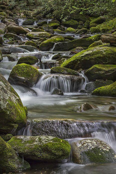 Great Smoky Mountains National Park; photo by .Jon Glaser