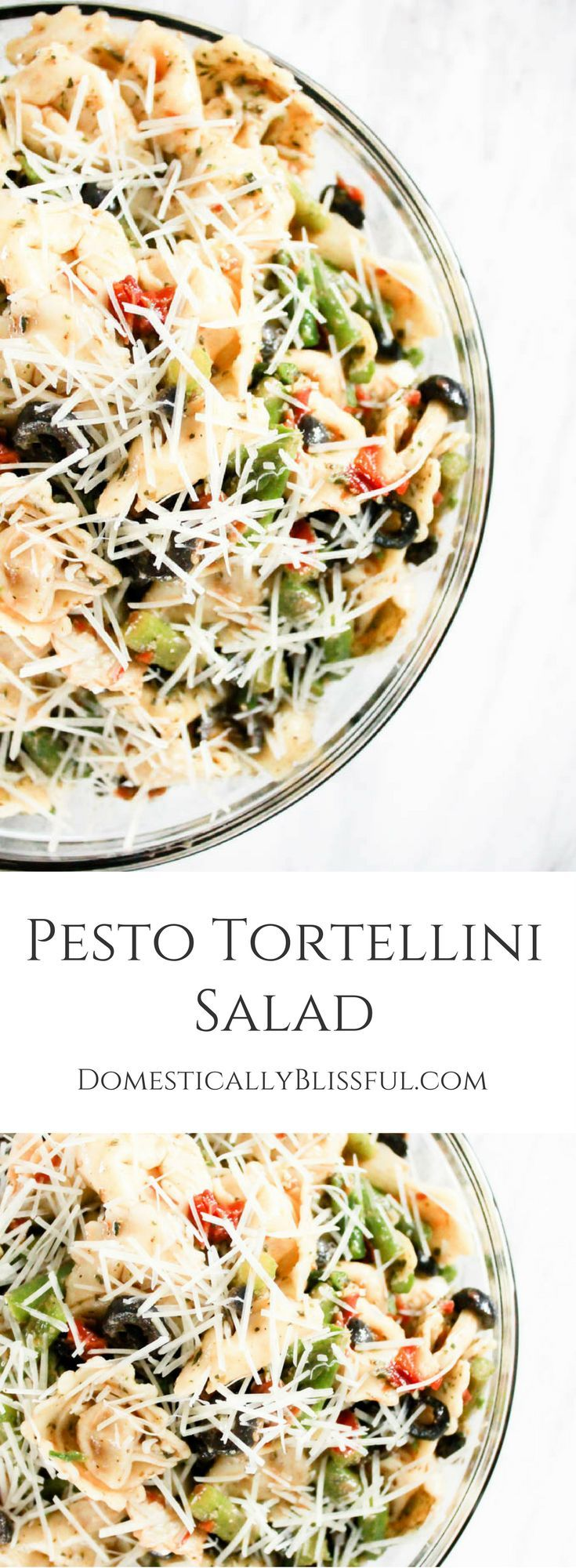 This Pesto Tortellini Salad is filled with asparagus, black olives, artichoke hearts, & sun dried tomato bruschetta making it a flavorful last minute dish for any occasion. | party pasta | pasta salad | pesto pasta salad | quick pasta salad | summer pasta