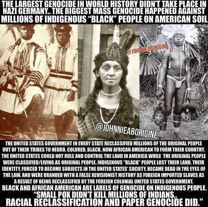GENOCIDE did not make America great...It promoted thievery, segregation, assimilation, hatred, fear, greed and lies with cover up | African history, History facts, African american history