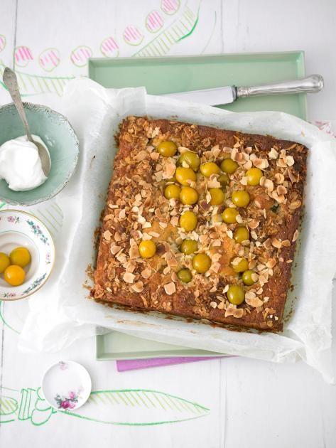 Dieser Kuchen lässt sich prima zum Picknick mitnehmen - dazu passt ein Glas Eistee.