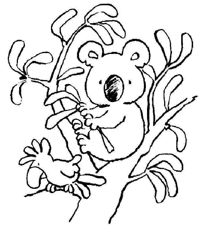 Simple Free Printable Koala Coloring Pages For Kids Free Printable Bear Coloring Pages Animal Coloring Pages Free Coloring Pages