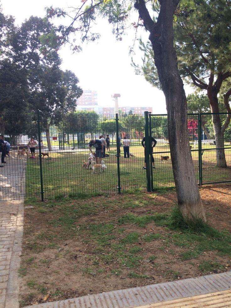 Parques para niños y parques para perros, busca las diferencias