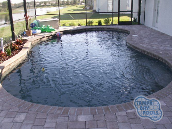 64 best swimming pool images on pinterest rustic blue for Pool design tampa