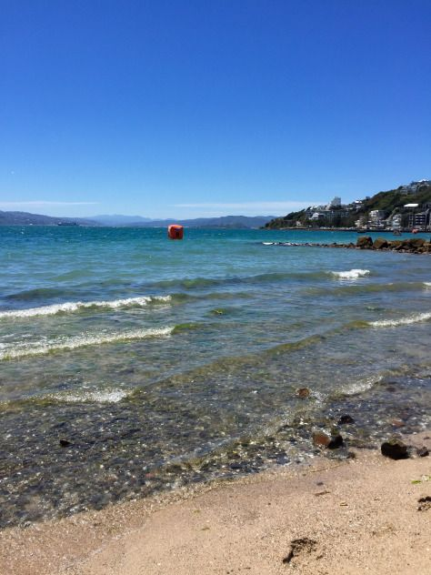 Oriental Parade, Wellington Beaches!
