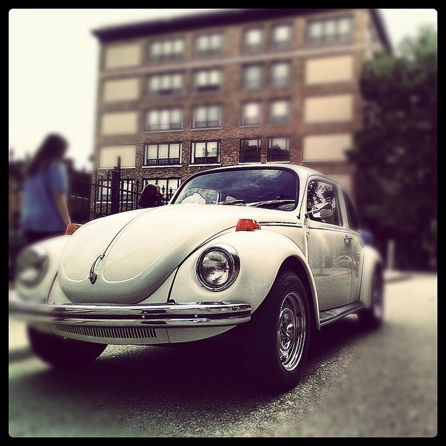 Punch Buggy Cars Vw And Vw Beetles