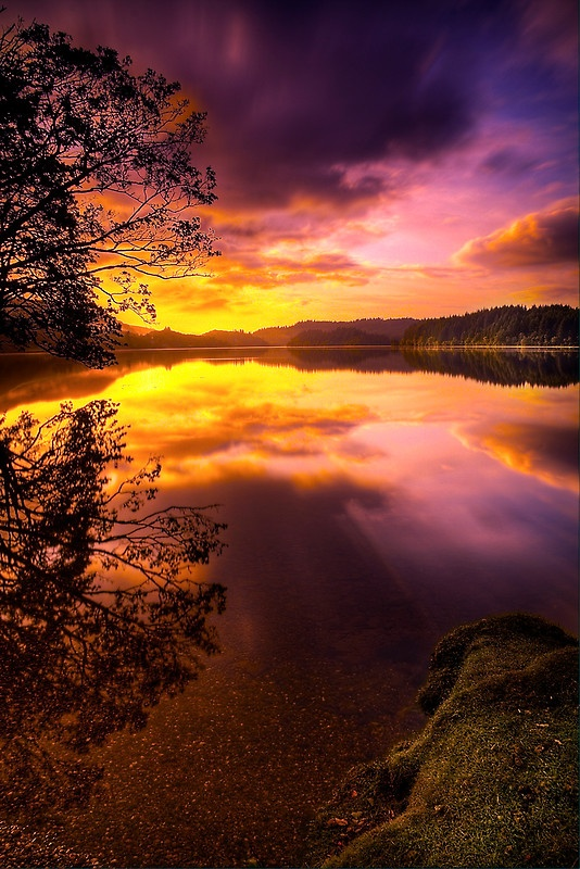 Sunrise at Loch Ard in the Loch Lomond and Trossachs National Park, Scotland