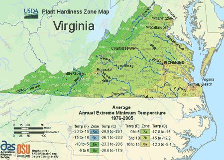 17 best images about hardiness zones ecosystems on pinterest trees virginia and we for What garden zone am i