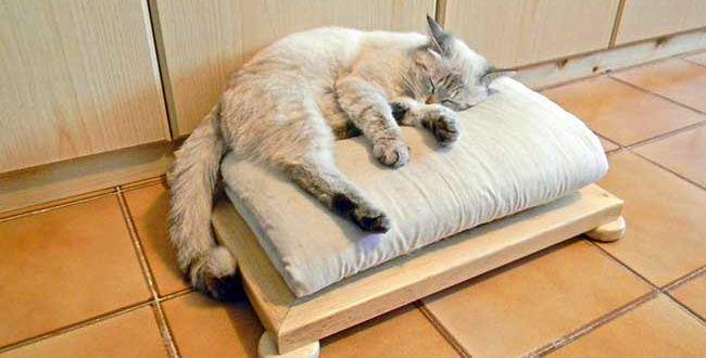 Futon for cats  Cuccia per gatti fai da te in legno   12 foto passo-passo