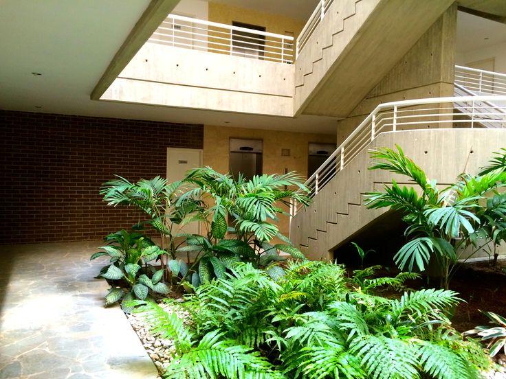 Jardín interno en Lobby de edificio Remanso Classic en Los Naranjos de Las Mercedes