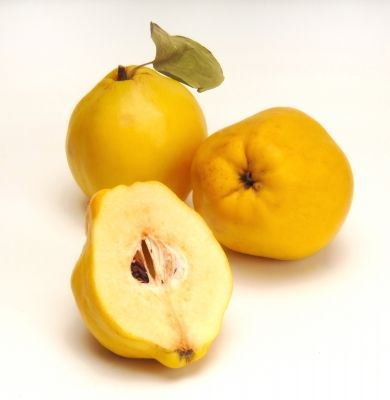 O que sabe sobre antioxidantes?