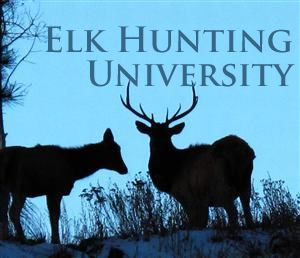 Elk Hunting University | Colorado Parks and Wildlife