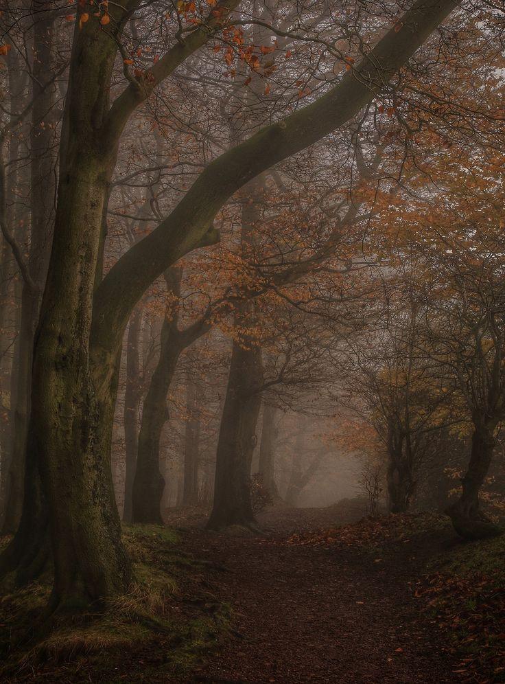Clent Hills, Worcestershire, England